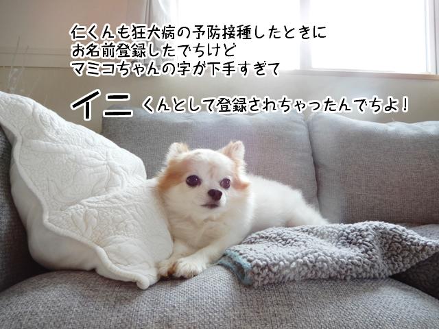 f:id:mama-mamico:20181206184747j:plain